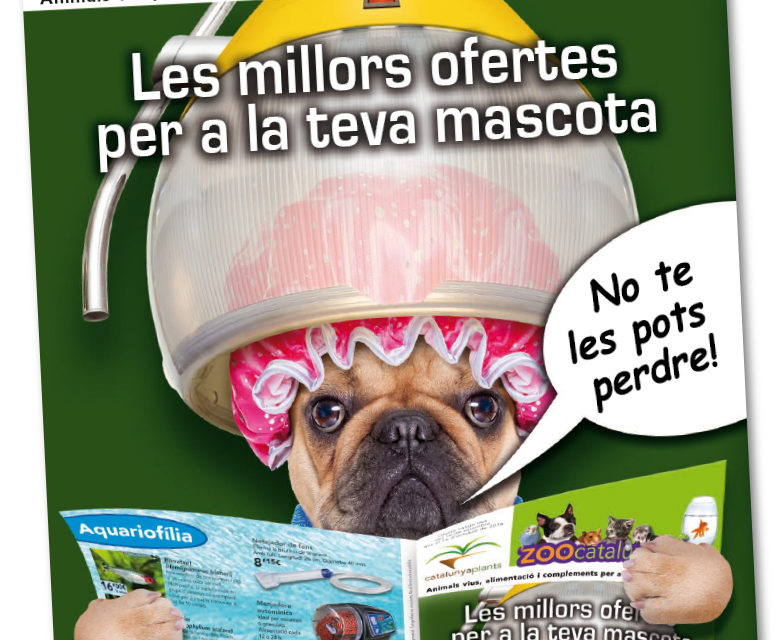 Descárgate nuestro catálogo de Mascotas.
