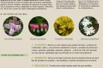 agenda-huerto-jardin-abril-2016