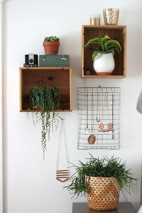 idees-decorar-amb-plantes-el-llar