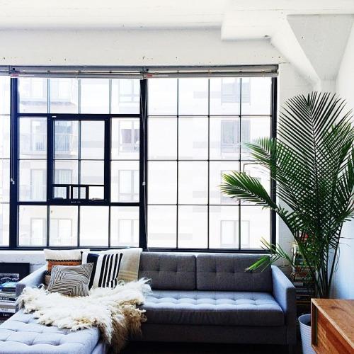 idees-decorar-amb-plantes-tu-llar