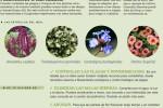 agenda-del-mes-junio-jardin-huerto