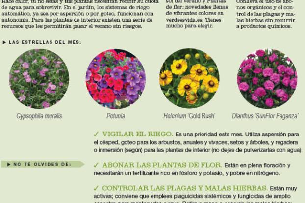 agenda-huerto-jardin-julio-2016