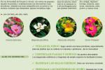 agenda-huerto-jardin-agosto-2016