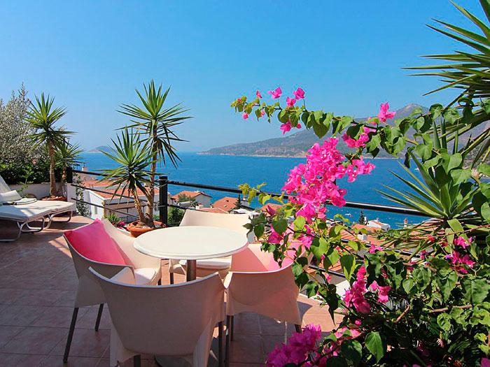10 plantas ideales para jardines y terrazas junto al mar