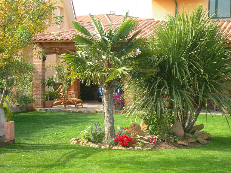 10 Plantas Ideales Para Jardines Y Terrazas Junto Al Mar Garden - Decoracion-de-jardines-con-plantas