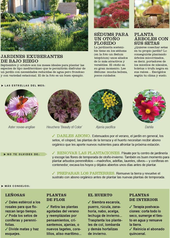 Agenda del huerto y jardín de septiembre.