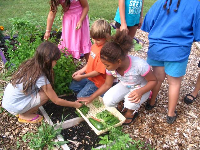Beneficios de que los niños practiquen la jardineria