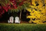 tareas-del-mes-de-octubre-en-el-jardin