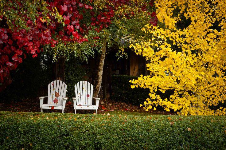 Agenda del huerto y jardín de octubre.