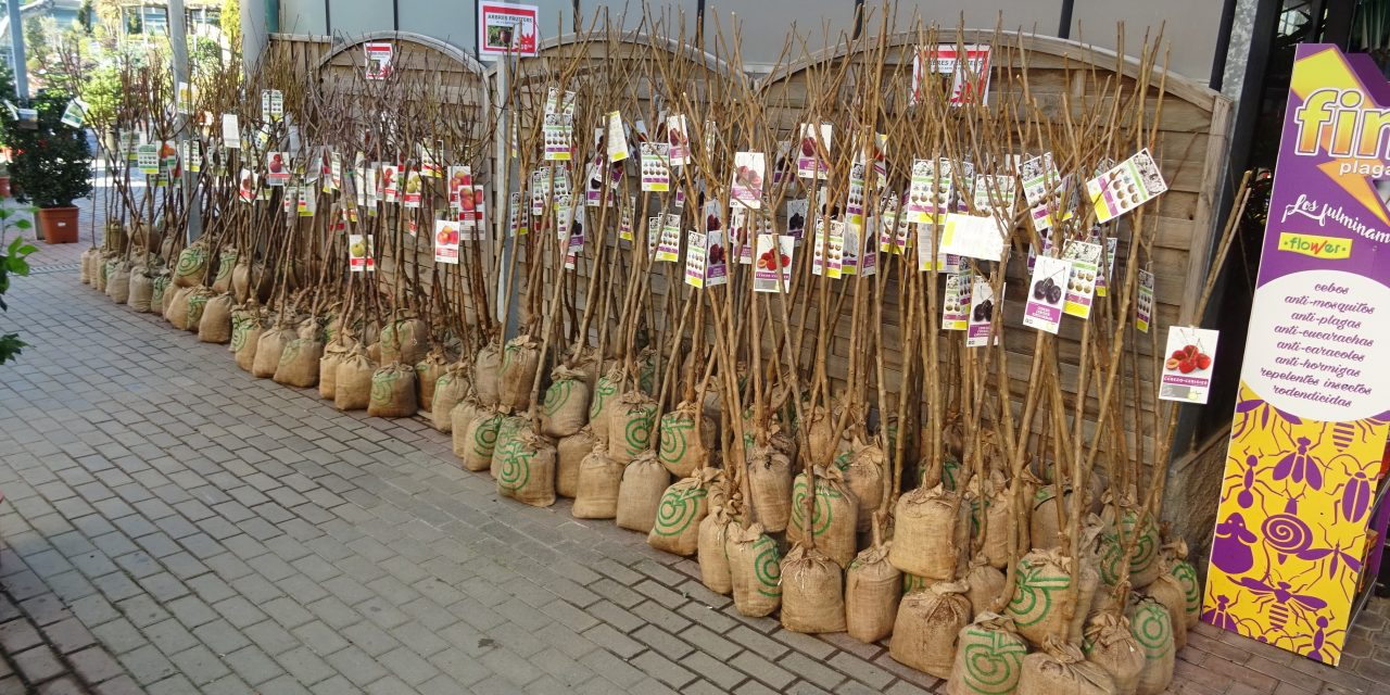 ¡Ya han llegado los Árboles Frutales con cepellón en bolsa!