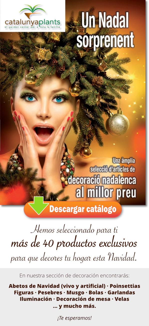 Descárgate el catálogo decoración de Navidad 2016