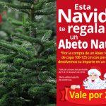 Esta Navidad te regalamos un abeto natural