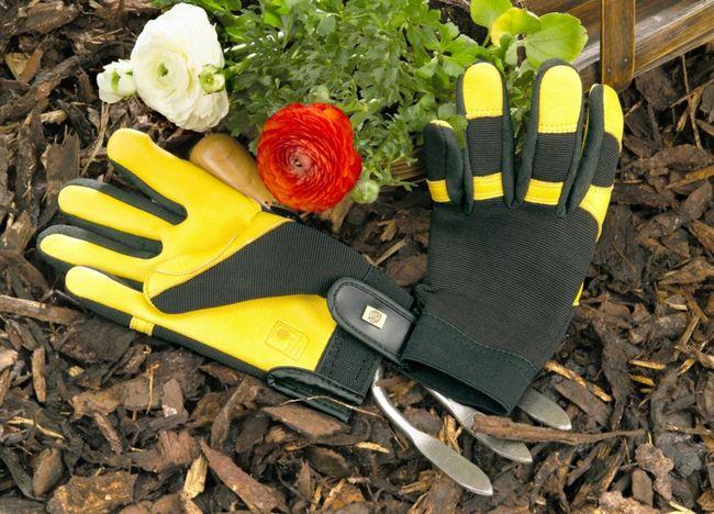 guantes-proteccion-jardineria
