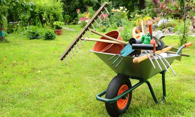 Las herramientas esenciales para tu jardín.