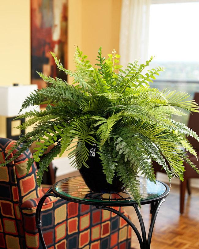 Ventajas y usos de las plantas artificiales