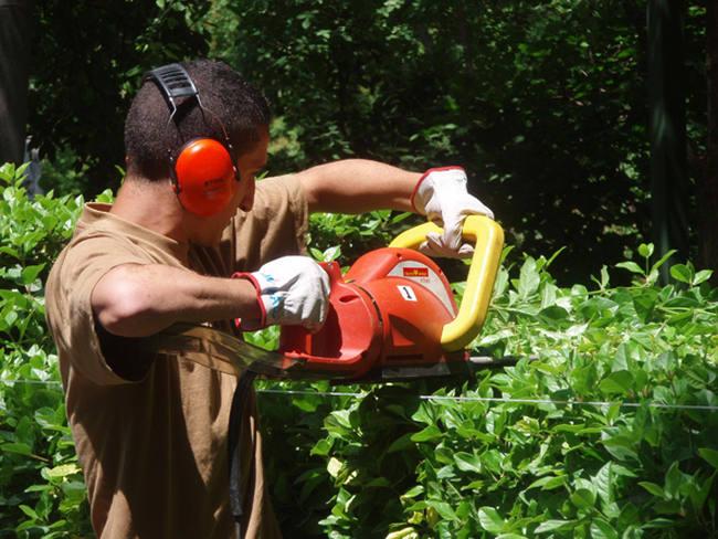 consejos de seguridad y salud en jardineria