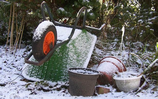 Agenda del jardín de Enero.