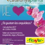 ¿Te gustan las orquídeas? Apúntate a nuestro taller gratuito.