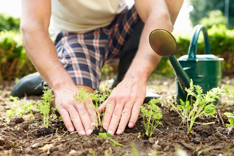 Agenda del jardín de Abril
