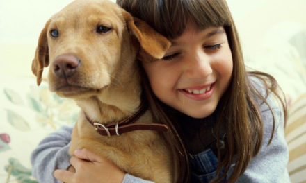 Claves para alimentar a tu perro adecuadamente