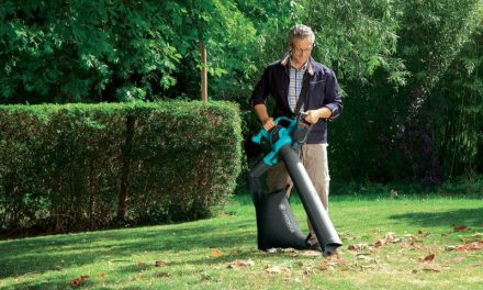 Las hojas caídas ya no serán un problema en tu jardín