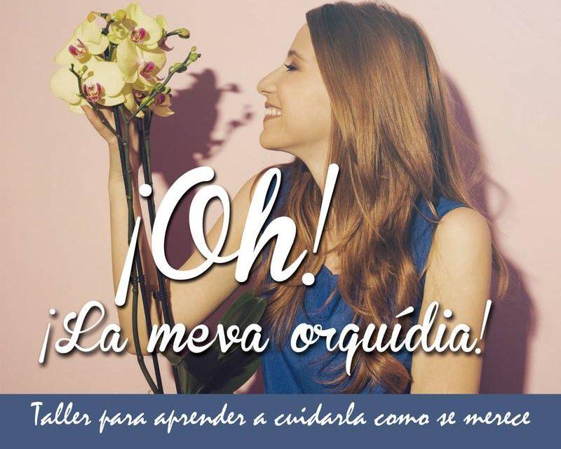 ¿Te gustan las orquídeas? Apúntate a nuestro curso gratuito