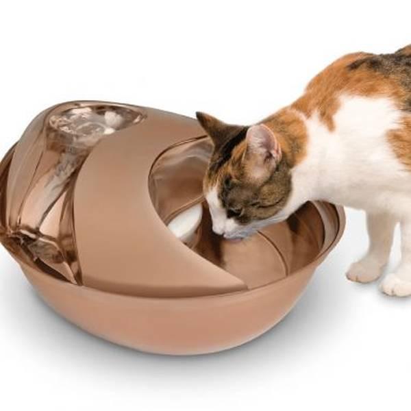 venta-fuentes-bebederos-automaticos-gatos-barcelona