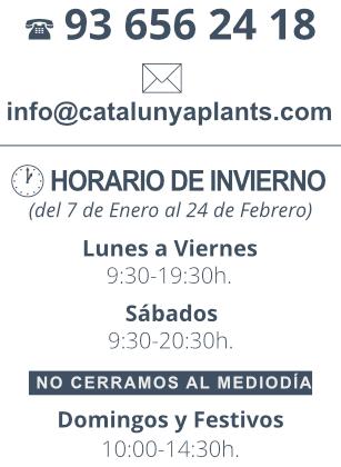 banner-horario-invierno-catplants