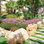 Claves para el cuidado del jardín mediterráneo