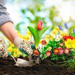 Agenda del jardín de Junio