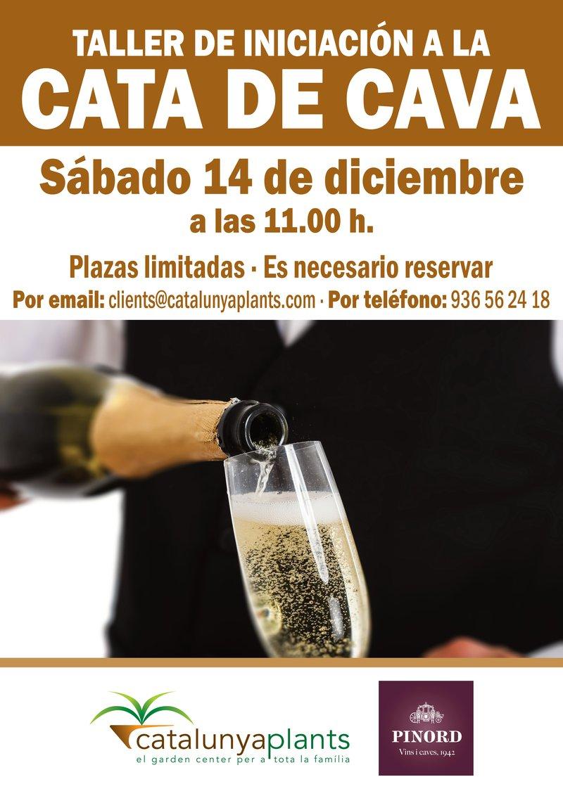 taller-cata-de-cava-2019