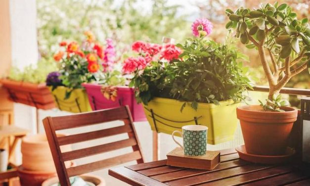 Ideas para crear un jardín en la terraza