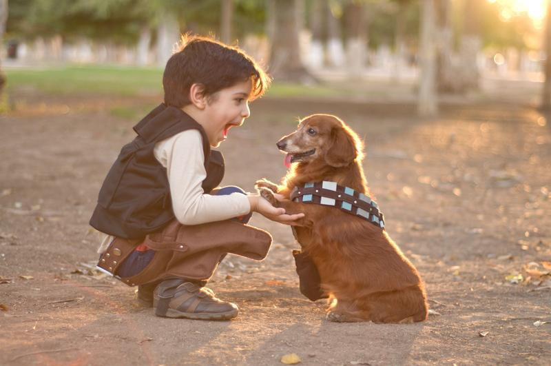 Cómo y porqué enseñar a un niño a cuidar de una mascota
