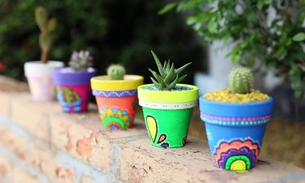 Ideas para decorar macetas y jardineras